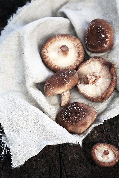 Conheça os benefícios do cogumelo shiitake